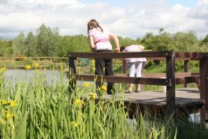 Pond dipping at Aycliffe Nature reserve