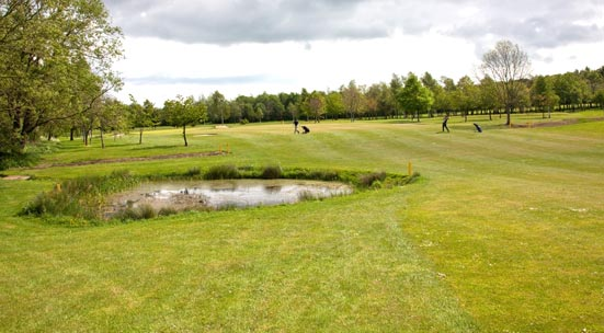 2nd photo showing hole 12