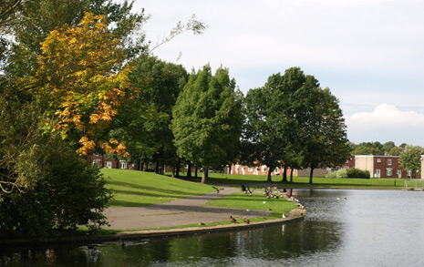 A park with large trees surrounding and a pond