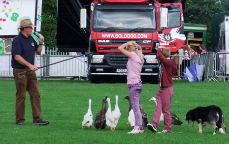 People on a field with ducks next to them and a truck in the background